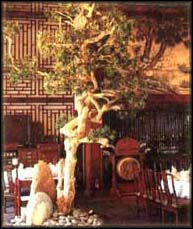 mandarin court best luxury gourmet restaurant in singapore