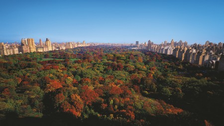 ritz carlton central park legendary best luxury palace hotel in manahattan new york usa