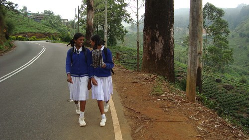 best of sri lanka nuwar eliya the little england of ceylon